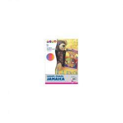 CART.OND 50x70 ONDU JAMAICA /2227